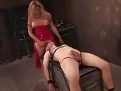 Bound guy sucks dick to tranny in latex