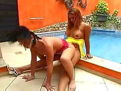 Titty Trannies Ass Pounding By The Pool